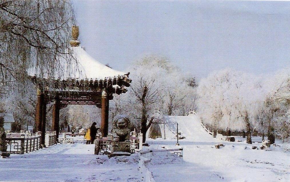Winter China Garden