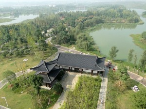 Yanghu Wetland Pk DSC06723
